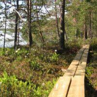 Virkistys- ja luontokohteiden tiedot ja toimijat kootaan yhteen