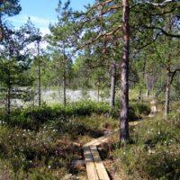 Virkistys- ja luontomatkailukohdetietoa avoimeen käyttöön -tilaisuus 30.5. Raisiossa